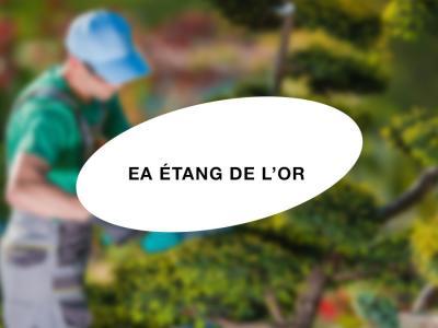 EA de l'Etang de l'Or