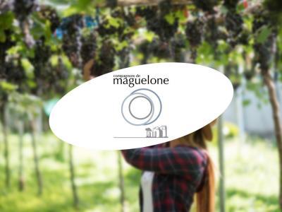 Les ateliers de Maguelone